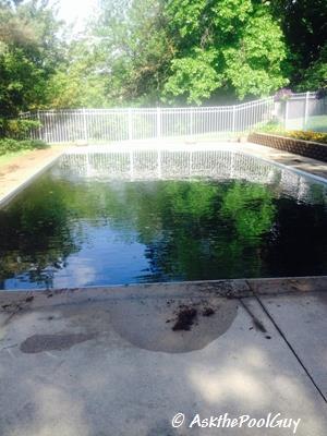 Vinyl Liner Pool Opening Series Green Water (2)