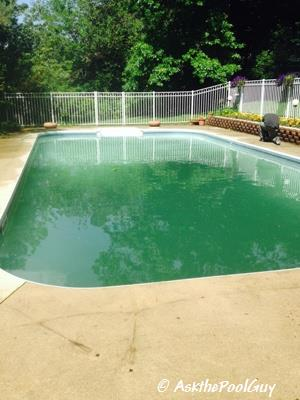 Vinyl Liner Pool Opening Series Green Water (7)