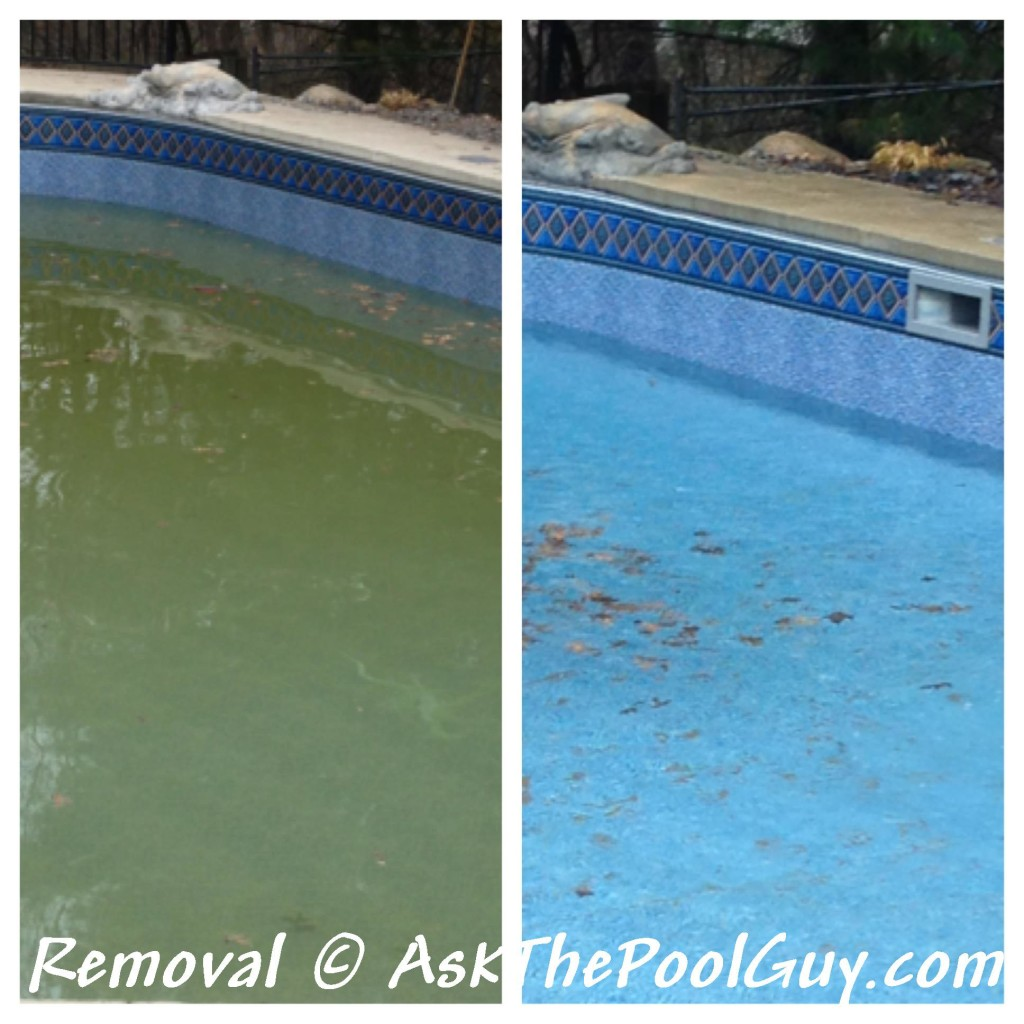 FerriTab Use in Pools Before and After