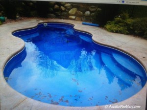 Fiberglass pool and Safety Cover (1)