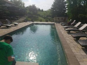 shades of green pool
