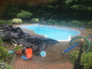 pool opening (6)
